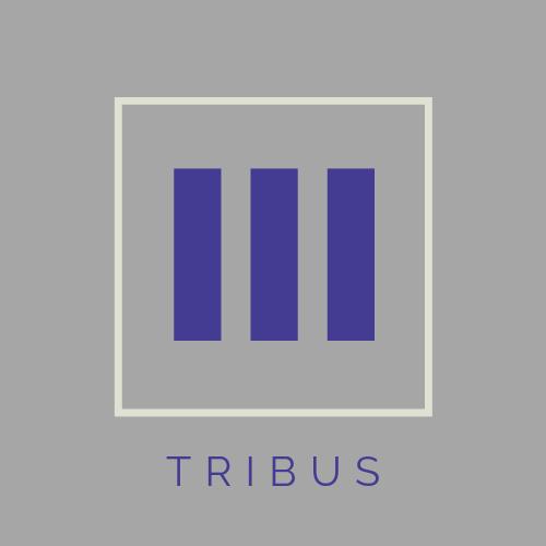 Tribus Designs